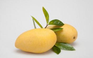 海南热带水果有哪些