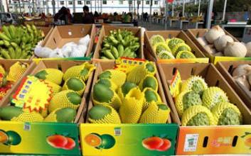 三亚市水果店经营规范政策出台
