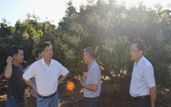 白沙科协举办热带水果生产技术培训班