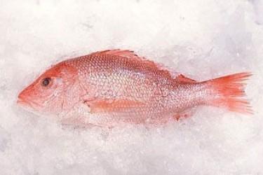 儋州红鱼粽