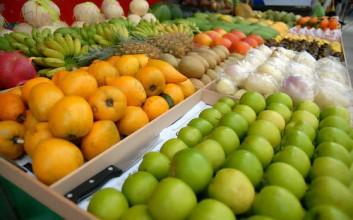 一季度海南省水果价格同比下降11.3%