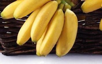 海南皇帝蕉