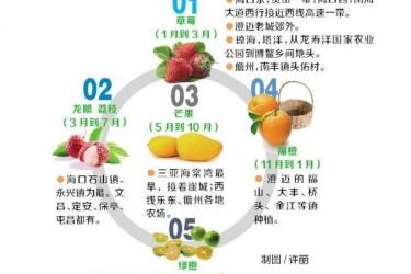 海南热带水果采摘攻略[采摘指南]