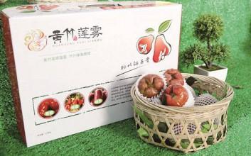 海南定安黄竹水果采摘活动6月3日启动