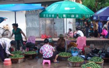 海南万宁槟榔