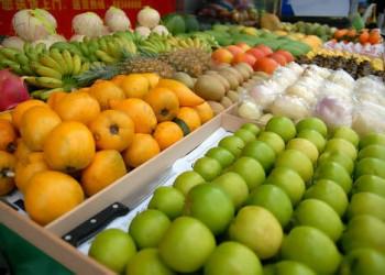 2016年一季度海南省水果价格同比下降11.3%