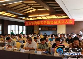三亚海棠区芒果协会正式成立