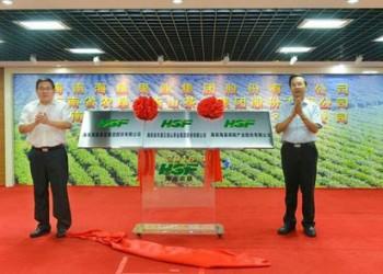 海南农垦全力推进茶叶产业跨越发展