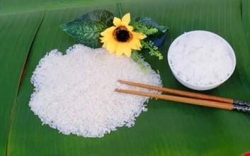 海南首家定安富硒大米专卖店隆重开业