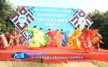 2016保亭红毛丹旅游季开启,4条线路任你选