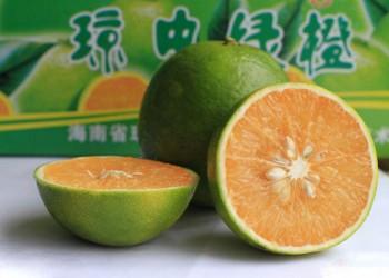 海南琼中绿橙上市时间