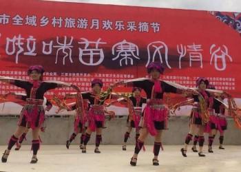 三亚全域乡村旅游月欢乐釆摘节盛大开幕