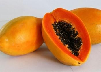 红心木瓜是转基因水果吗