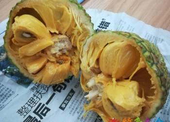 海南6月上市水果介绍,有你没吃过的吗?