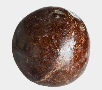 黑色外壳的椰子