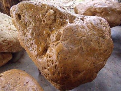 海南黄蜡石