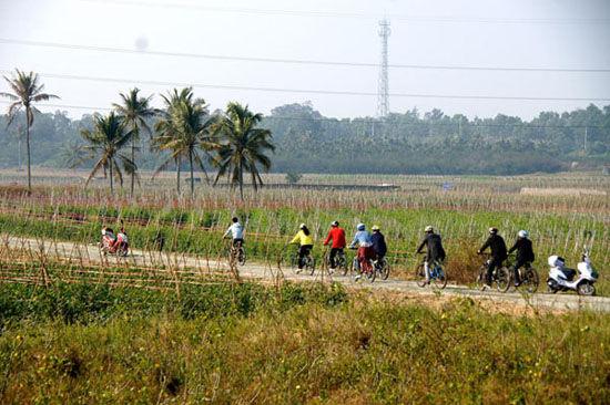 骑行中的游客