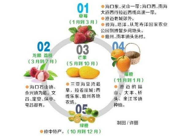海南水果采摘攻略图