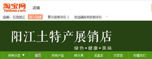 阳江农村淘宝店