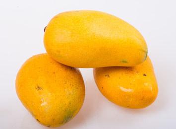 台农一号芒果