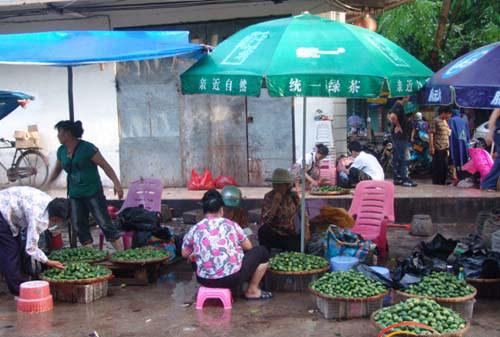 万宁槟榔集市