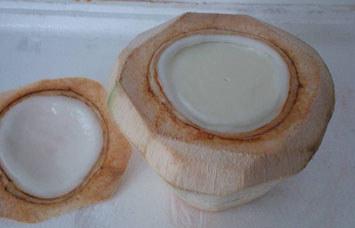 海南椰子冻