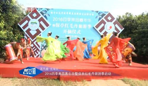 保亭红毛丹旅游季开启(新闻报道)