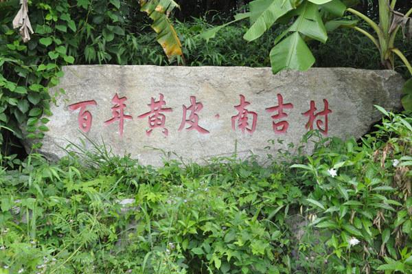百年黄皮·南吉村