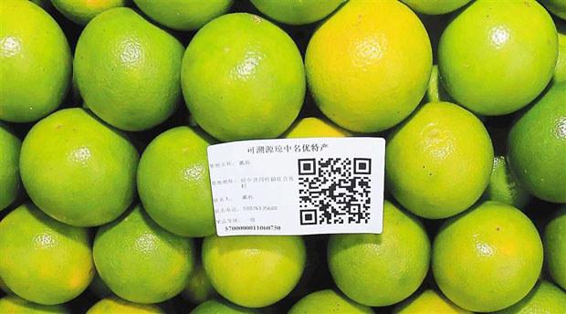 琼中绿橙可扫二维码溯源