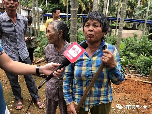 媒体采访农户
