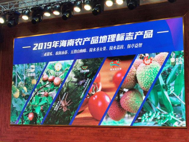6个海南农产品获颁国家地理标志