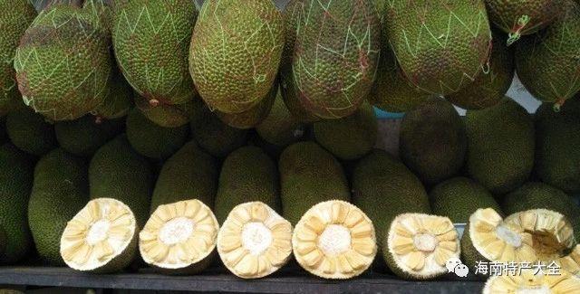 马来西亚5号菠萝蜜