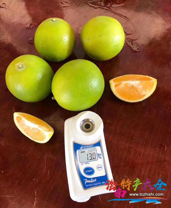 琼中绿橙甜度测试